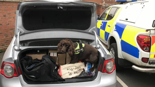 Photo of car containing seized illegal tobacco from Europe Quality Foods, Ross (c) Herefordshire Council