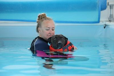 Therapist holding dog in hydrotherapy pool