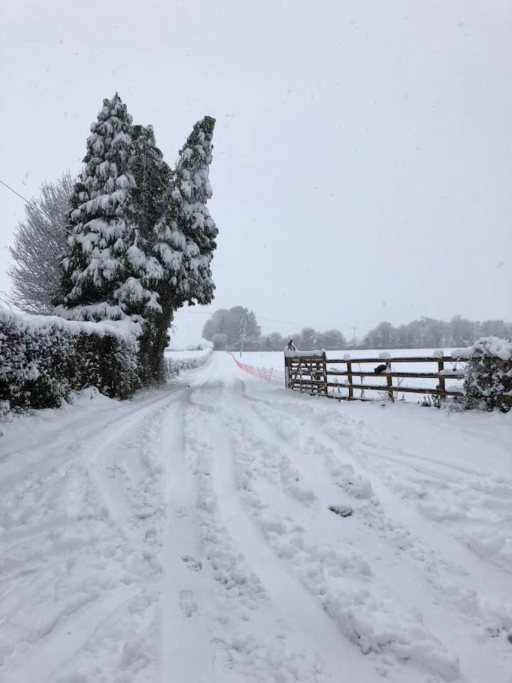 Snowy lane in Herefordshire