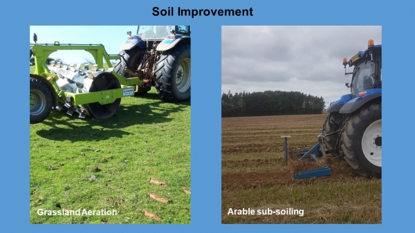 NFM Soil improvement project